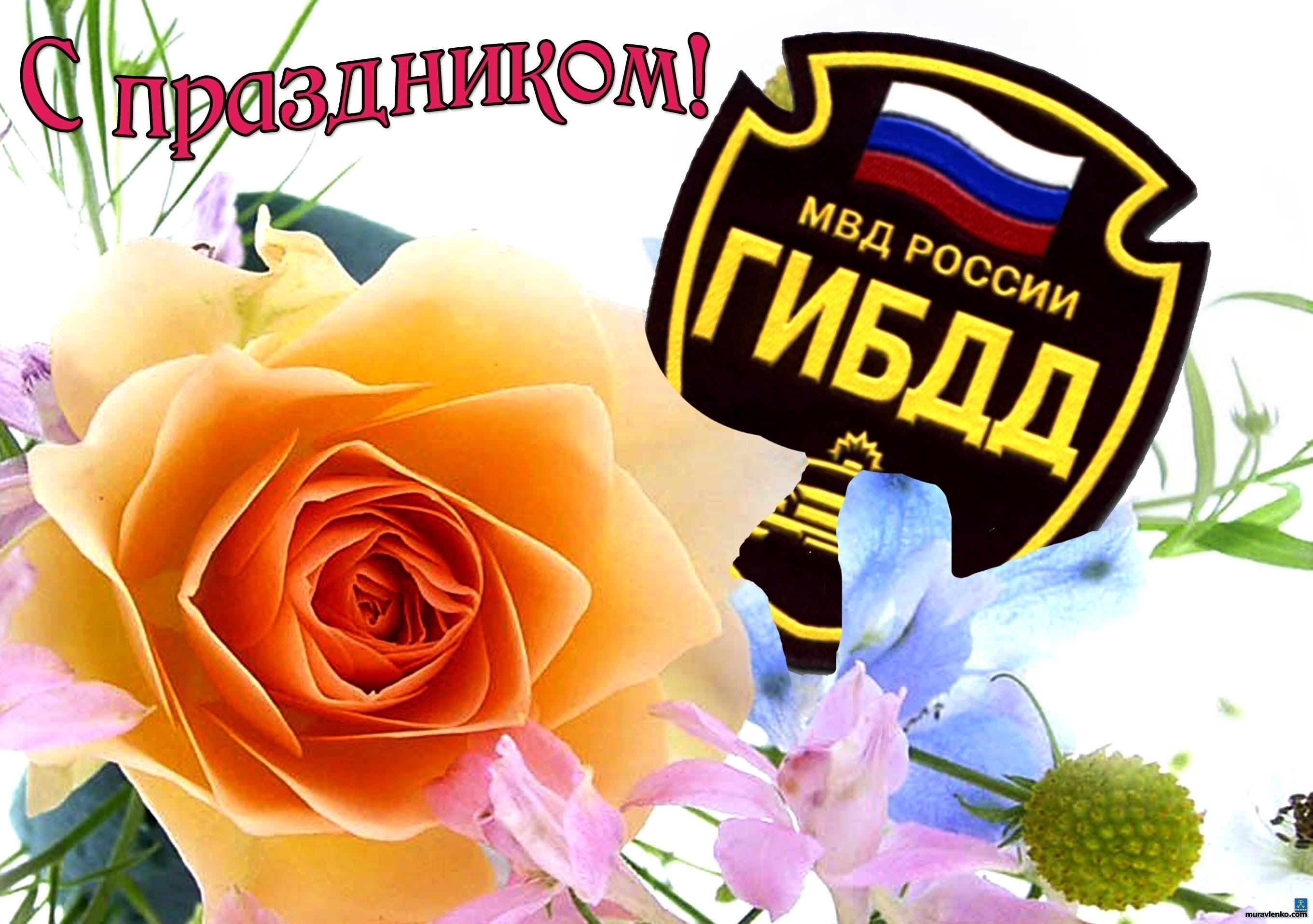 """Поздравление с профессиональными праздниками учебный центр """"Ракурс"""""""
